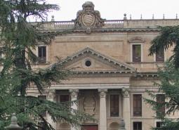 Palacio_de_Anaya (1)