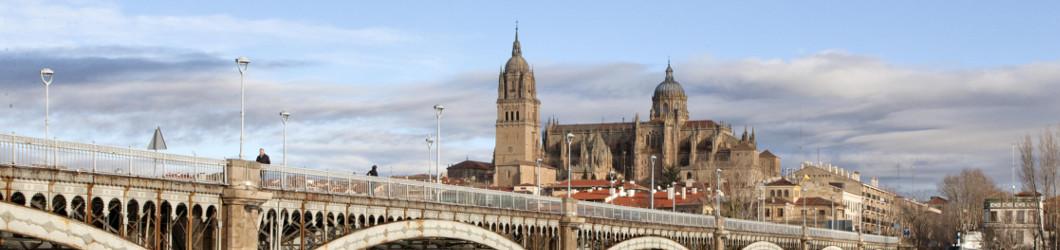 Puente Enrique Estevan de Salamanca. Foto: David Arranz